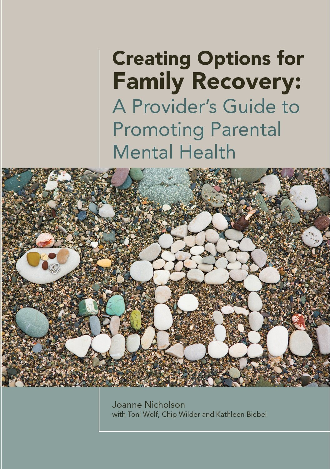 Creating Options for Family Recovery