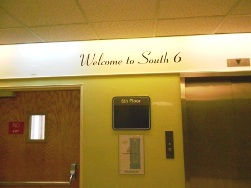 south6