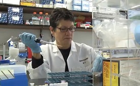 Luzuriaga: HIV return in Boston patients provides clues for scientists
