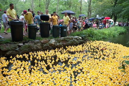 Bullfinchs Duck Race 2013 - 2