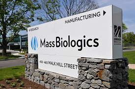 FDA grants orphan drug status for Hepatitis C treatment developed by MassBiologics