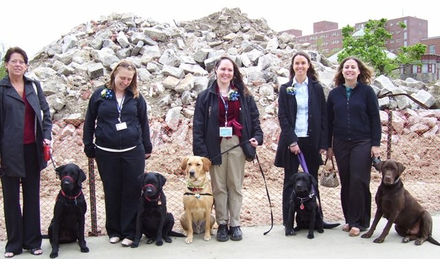 Dogs for Adolescent Treatment Programs