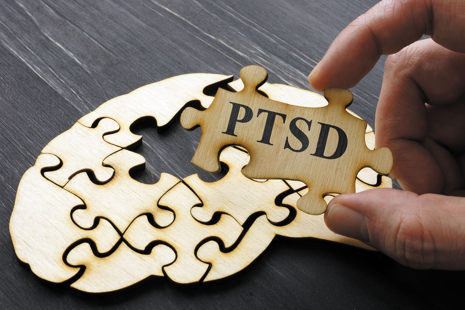 hand hold puzzle piece imprinted with PTSD