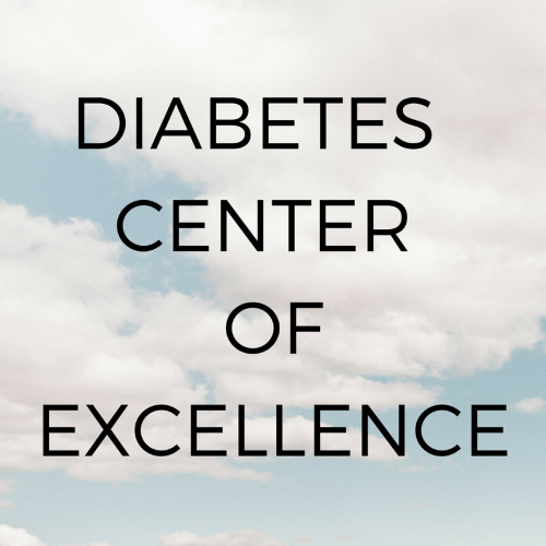 Clinical Diabetes Centers of Excellence: A Model for Future Adult Diabetes Care
