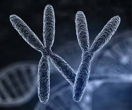 What is Gene Therapy - research, therapeutic strategies, tools and technologies - Horae G