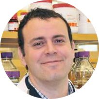 Dr. Miguel Sena-Esteves from the Esteves Lab (Horae Gene Therapy Center) is conducting research and developing therapeutic strategies for rare inherited diseases such as the Tay-Sachs disease