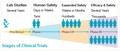 Stages of Clinical Trials