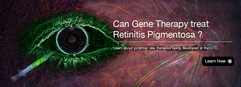 Eye and Gene Therapy
