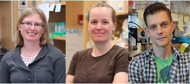Caitlin Brown, PhD; Amanda Monahan, PhD; and Gregoriy Dokshin, PhD