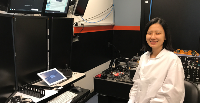 Postdoc Li-Chun Tu awarded NIH grant to study human chromosome dynamics