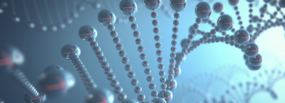bioinformatics and chemical biology dna helix