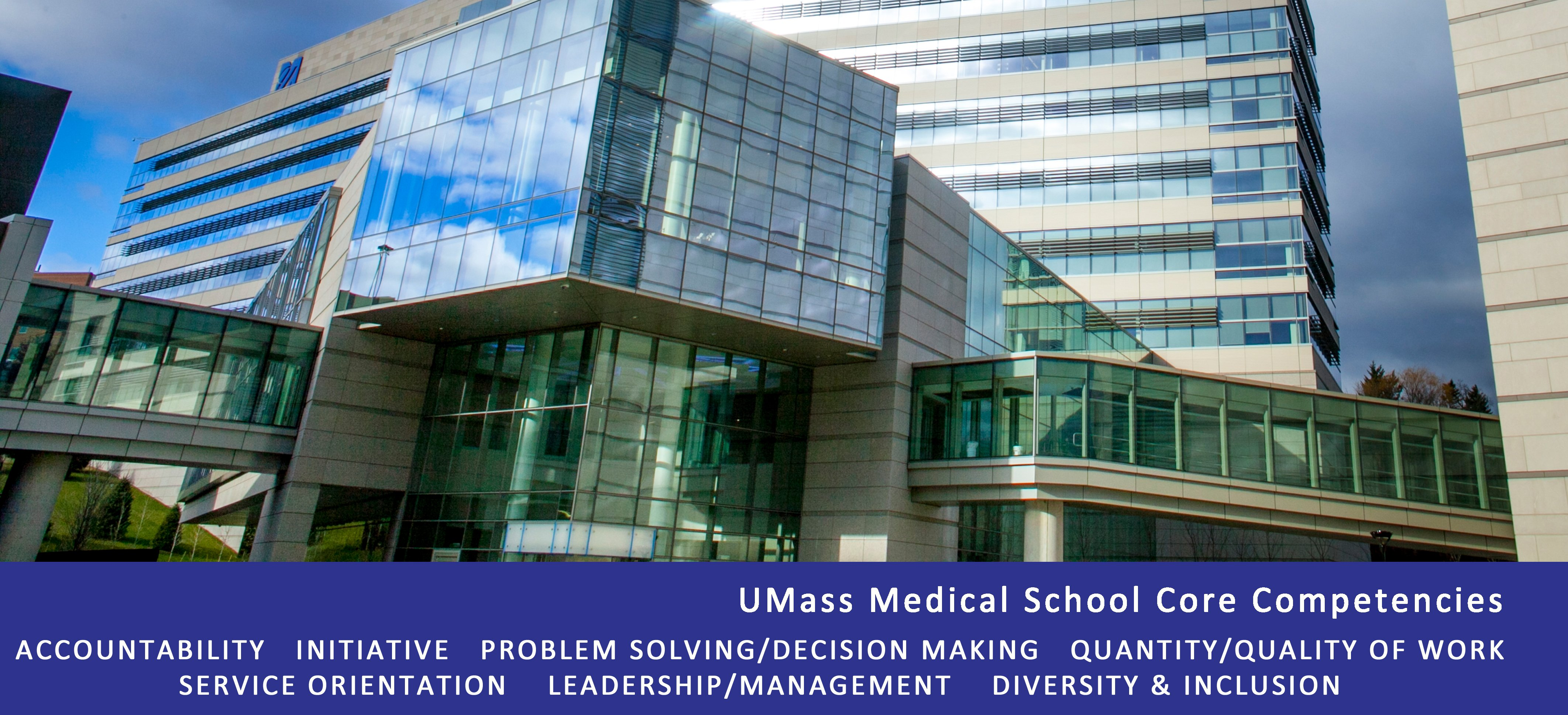 UMass Medical School Core Competencies