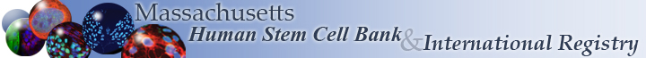 Human Stem Cell Bank and International Registry banner