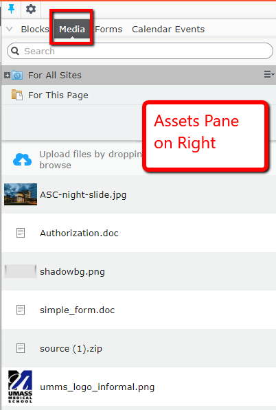 Assets pane is on the Right side of the CMS UI