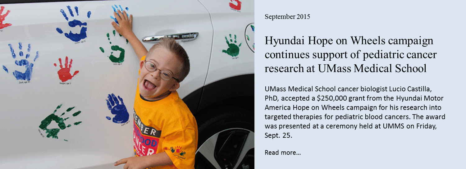 Hyundai Hope on Wheels grant