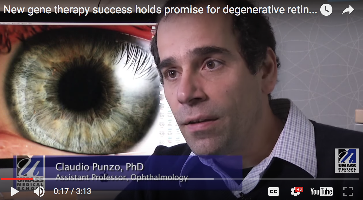 UMMS experts: New gene therapy success holds promise for retinal diseases