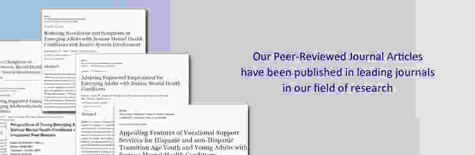 Peer reviewed journal articles image